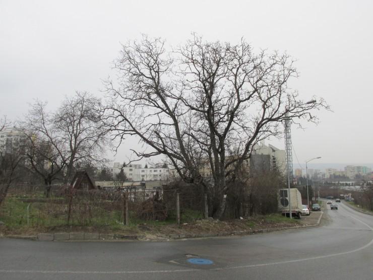 Undeva în această curbă se găseşte numărul 8 pe strada Fagului din Cluj
