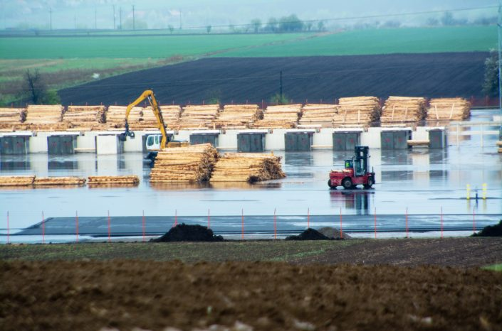 Schweighofer starts operating its pine processing plant without permit