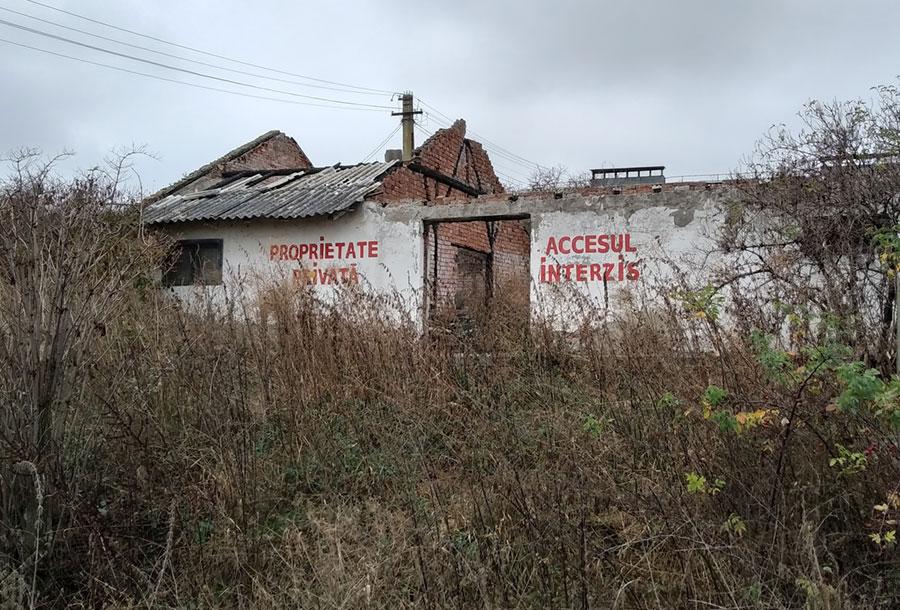 Leégett csarnok Radu Țermure kolozsvári állatmenhelyén