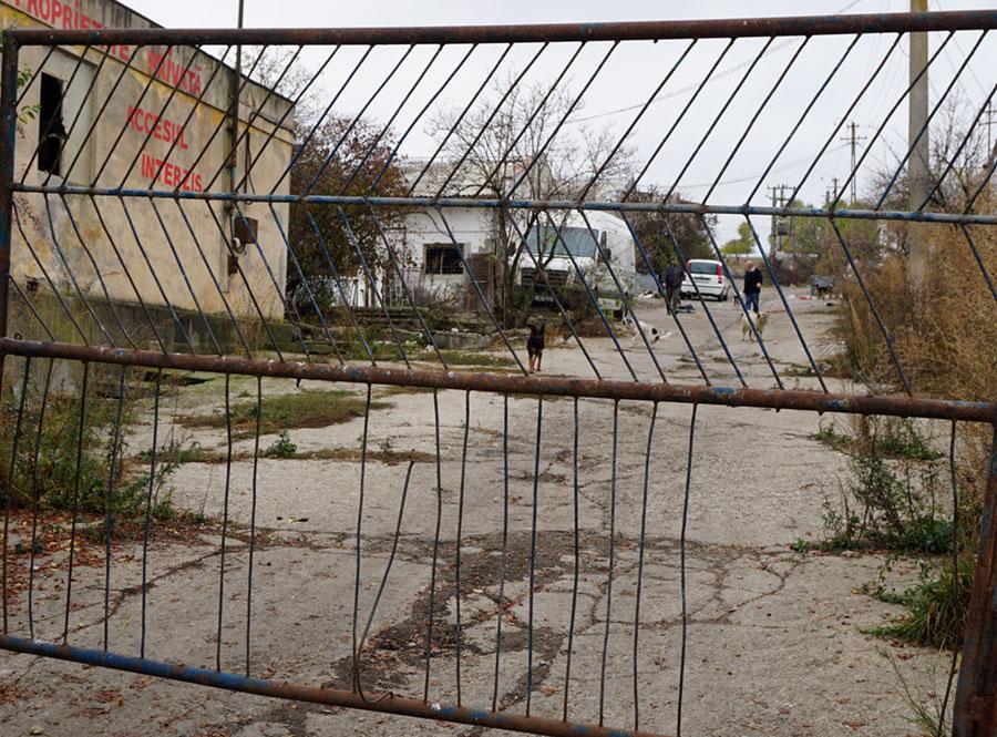 Redu Țermure menhelyének kapuja