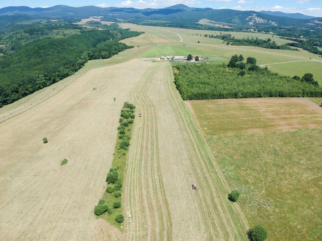 A farm, amiről a helyiek azt beszélik, a polgármester családjáé. Fotó: Egyed Ufó Zoltán